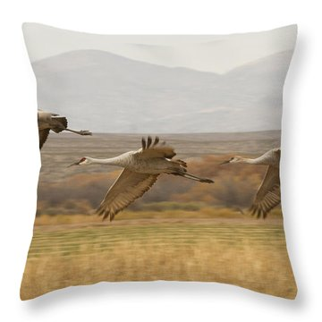 Throw Pillow featuring the photograph 3 By 3 The Cranes They Fly by Ruth Jolly