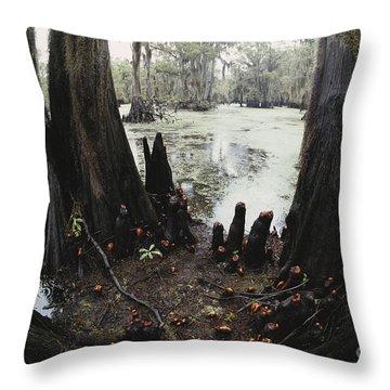 Caddo Lake, Texas Throw Pillow