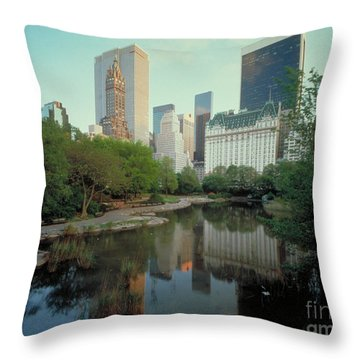 Central Park Throw Pillow by Rafael Macia