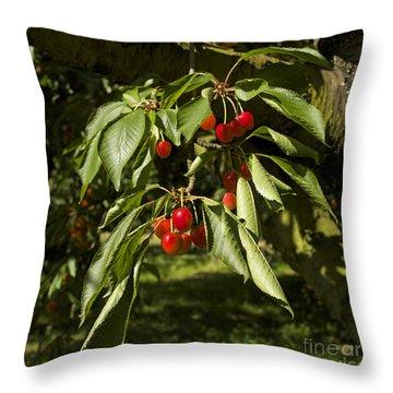Cherry Tree Throw Pillow by Bernard Jaubert