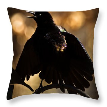 Common Grackle Throw Pillow