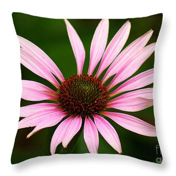 Throw Pillow featuring the photograph Coneflower - Echinacea by Lisa L Silva