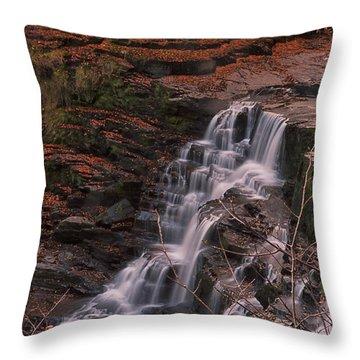 Corra Linn Throw Pillow