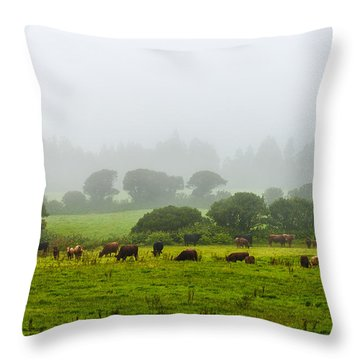 Cows At Rest Throw Pillow