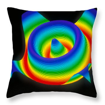 3-d Surface Throw Pillow by Scott Camazine