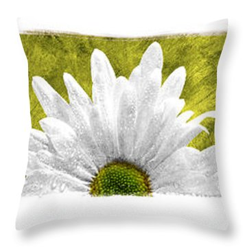 3 Daisies  Throw Pillow by Mauro Celotti
