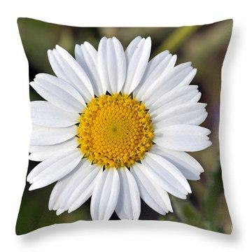 Daisy Flower Throw Pillow by George Atsametakis
