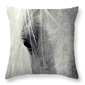 Equine Study Throw Pillow by Laurinda Bowling