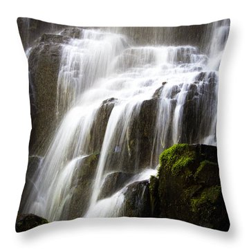 Fairy Falls Throw Pillow by Patricia Babbitt