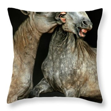 Flamenco Throw Pillow by Angel  Tarantella