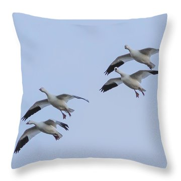 Flying Snow Geese Throw Pillow
