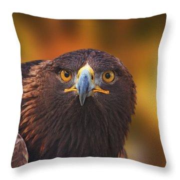 Golden Eagle  Throw Pillow by Brian Cross