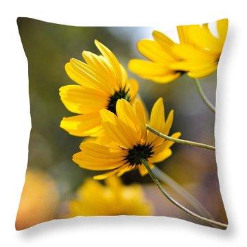 Golden Throw Pillow by Katherine White