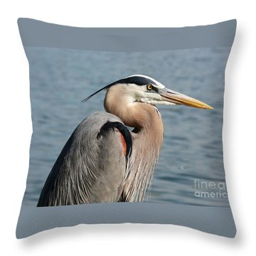 Great Blue Heron Profile Throw Pillow by Carol Groenen