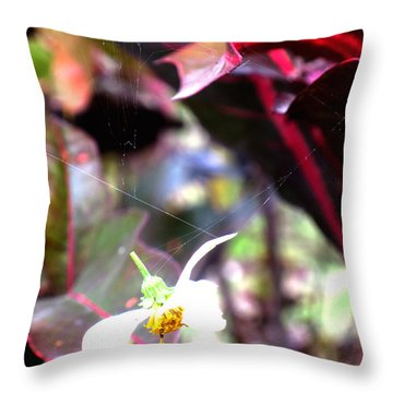 Hold Fast When You Have It Throw Pillow