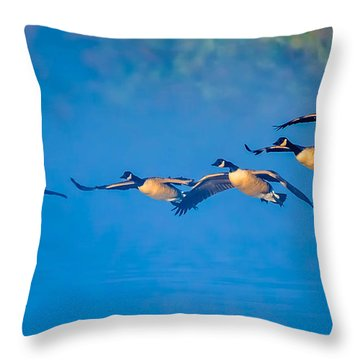 Incoming Geese Throw Pillow