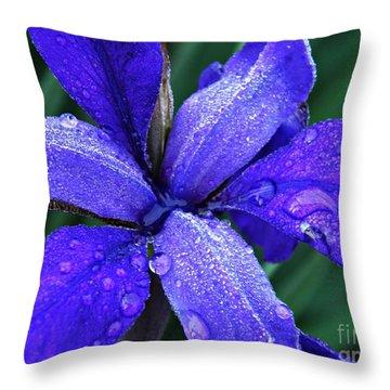 Iris 4 Throw Pillow