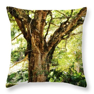 Kingdom Of The Trees. Peradeniya Botanical Garden. Sri Lanka Throw Pillow