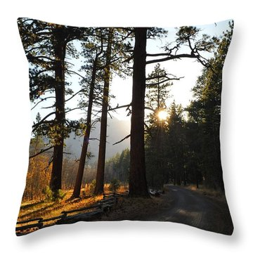 Mountain Road Throw Pillow