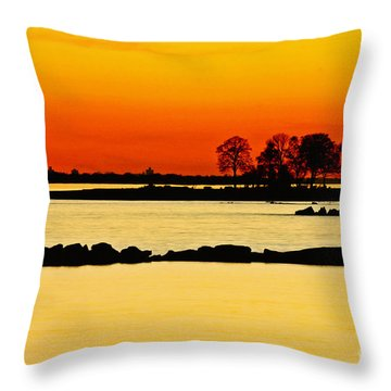Ocean Beach Sunset Throw Pillow by Carol F Austin