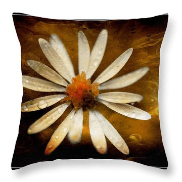 Throw Pillow featuring the photograph On Fire by Michaela Preston
