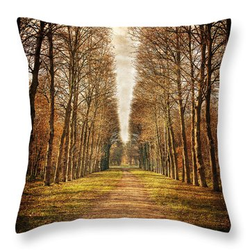 Path In The Woods / Versailles Throw Pillow