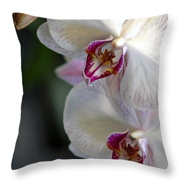 Phalaenopsis Orchid - The Moth Orchid Throw Pillow