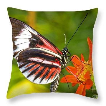 Piano Key Butterfly Throw Pillow by Millard H Sharp