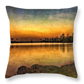 Pine Glades Lake Throw Pillow by Anne Rodkin