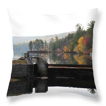 Pine River Pond  Throw Pillow