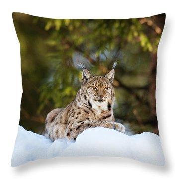 Wald Throw Pillows