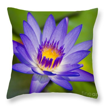 Pupukea Garden Breeze  Throw Pillow