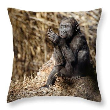 Quiet Juvenile Gorilla Throw Pillow