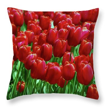 Throw Pillow featuring the photograph Red Tulips  by Allen Beatty