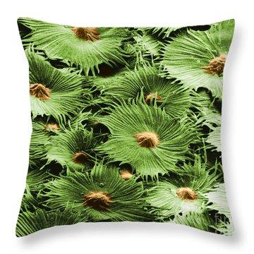 Russian Silverberry Leaf Sem Throw Pillow by Asa Thoresen