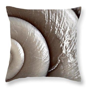 Seashell Detail Throw Pillow by Elena Elisseeva