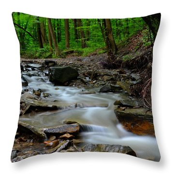 Serenity Throw Pillow by Frozen in Time Fine Art Photography