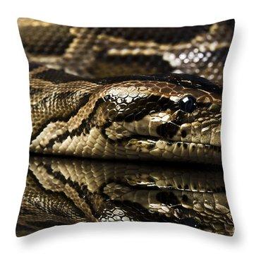Snake Throw Pillow by Gunnar Orn Arnason