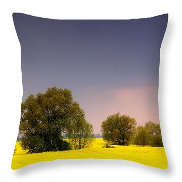 Spring Landscape Throw Pillow by Michal Bednarek
