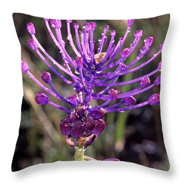 Throw Pillow featuring the photograph Spring Wild Flower by George Atsametakis