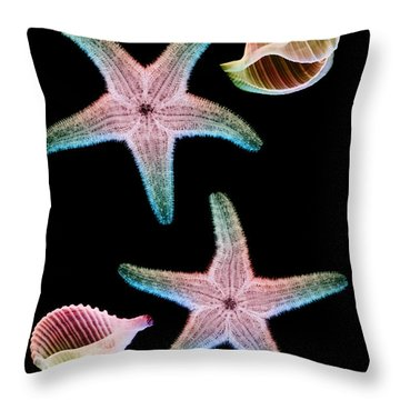 Starfish And Marine Molluscs Throw Pillow by D Roberts