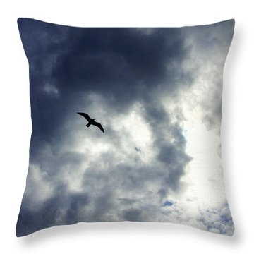 Throw Pillow featuring the photograph Storm Flyer by Marilyn Wilson