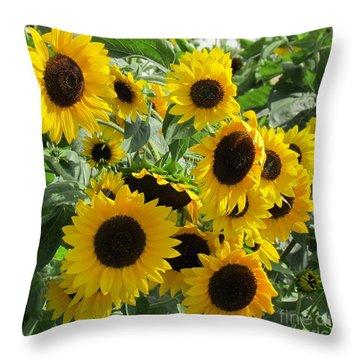 Sunflower Field Throw Pillow by France Laliberte