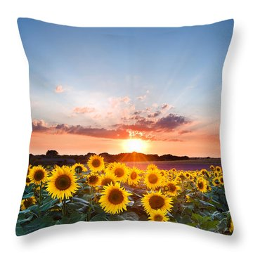Sunflower Summer Sunset Landscape With Blue Skies Throw Pillow