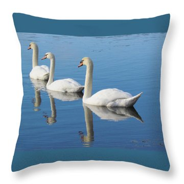 3 Swans A-swimming Throw Pillow