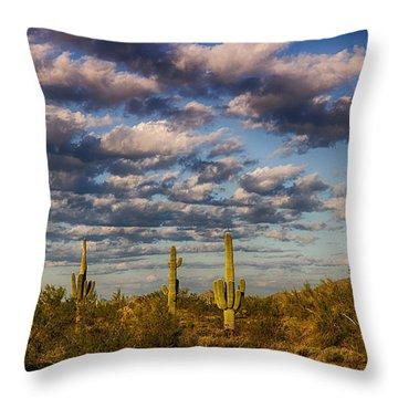 The Desert Golden Hour  Throw Pillow by Saija  Lehtonen