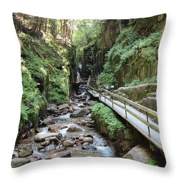 The Flume Gorge   Throw Pillow