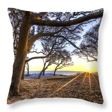 The Reach Throw Pillow by Debra and Dave Vanderlaan