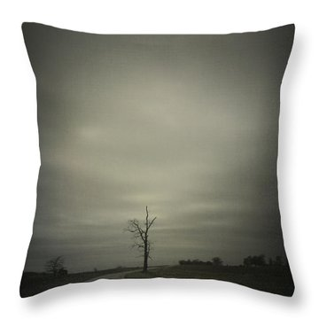 The Journey Throw Pillow by Cynthia Lassiter