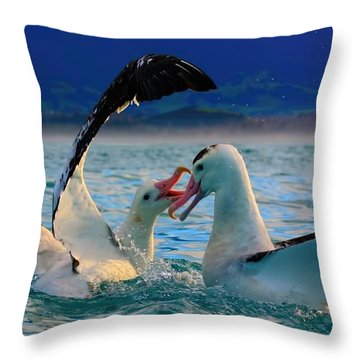 Wandering Albatross Throw Pillow by Amanda Stadther